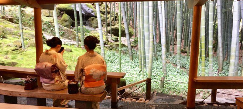 報国寺「休耕庵(きゅうこうあん)」の竹庭でお抹茶